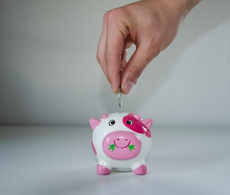 savings no spend piggybank