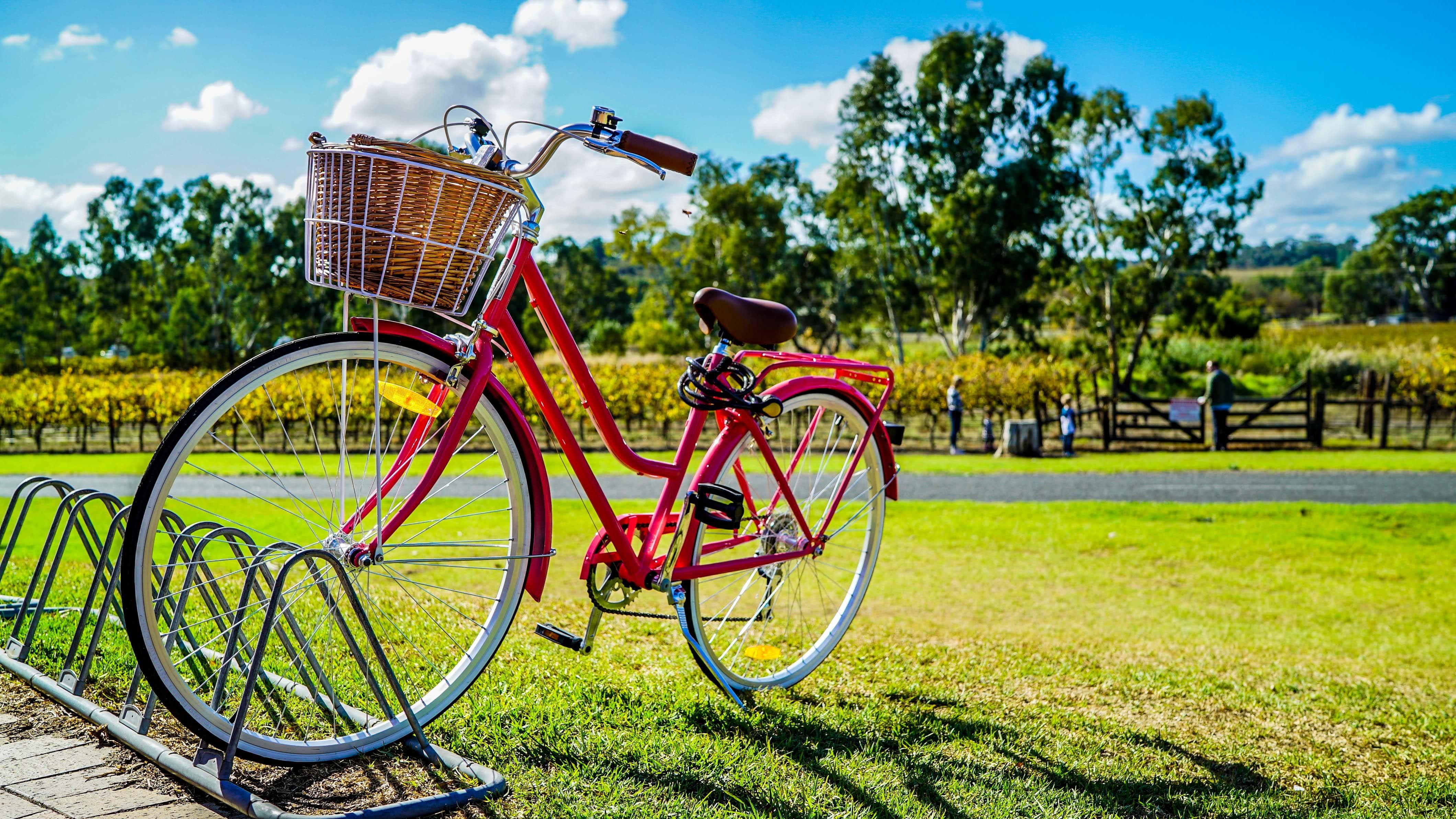 bike bicycle petrol
